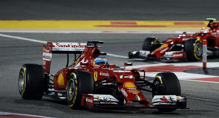 Fernando Alonso - GP Bahrain 2014