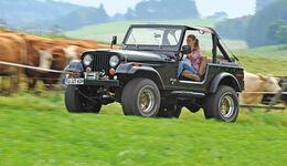 Jeep Wrangler, Seitenansicht