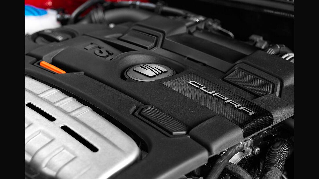 01/2013 Seat Ibiza Cupra, Motor