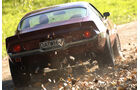 0206_Chevrolet Nova und Camaro