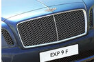 03/2012, Bentley EXP9 SUV Genf, Grill