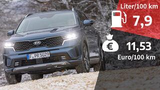 03/2021, Kosten und Realverbrauch Kia Sorento 1.6 T-GDi Hybrid AWD Spirit