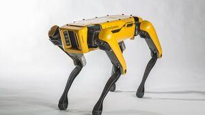 11/2017, Boston Dynamics SpotMini