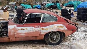 12/2019, Jaguar-Oldtimer Gewächshaus-Fund England