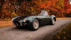 1965 Shelby 427 Cobra von Carroll Shelby