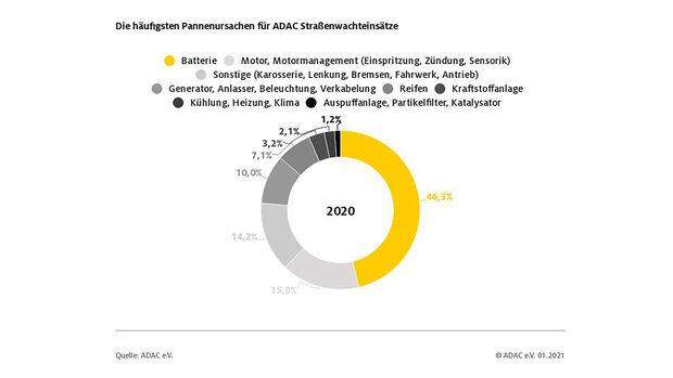ADAC Pannenstatistik 2020, Panne