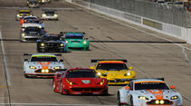 ALMS GT Sebring, Start-Ziel-Gerade, Rennszene