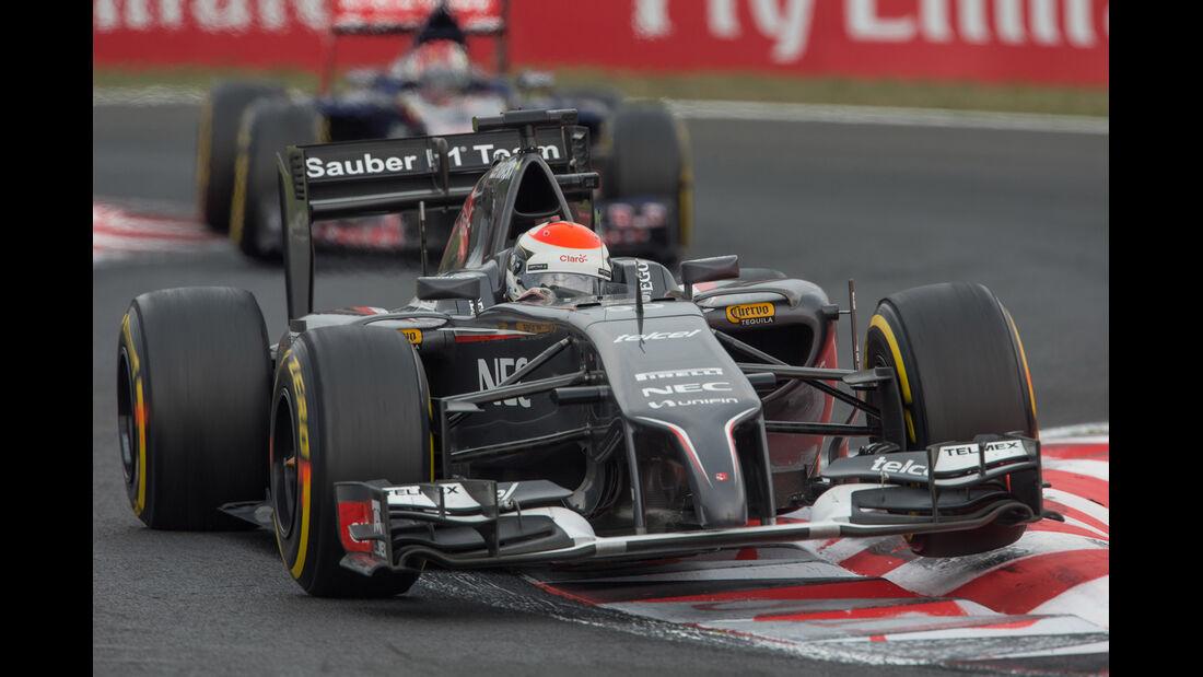 Adrian Sutil - GP Ungarn 2014