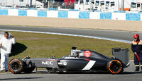 Adrian Sutil - Jerez Test - Crashs 2014
