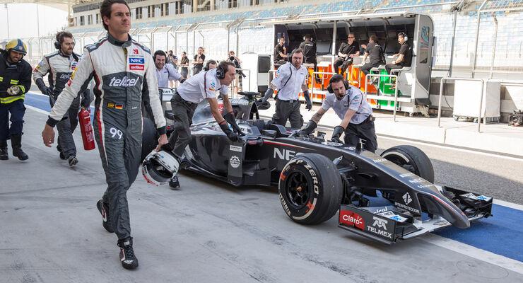 Adrian Sutil - Sauber - Danis Bilderkiste - Bahrain-Test 2014