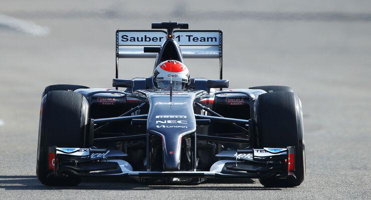 Adrian Sutil - Sauber - Formel 1 - Test - Bahrain - 22. Februar 2014