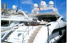 African Cat - Monaco 2010