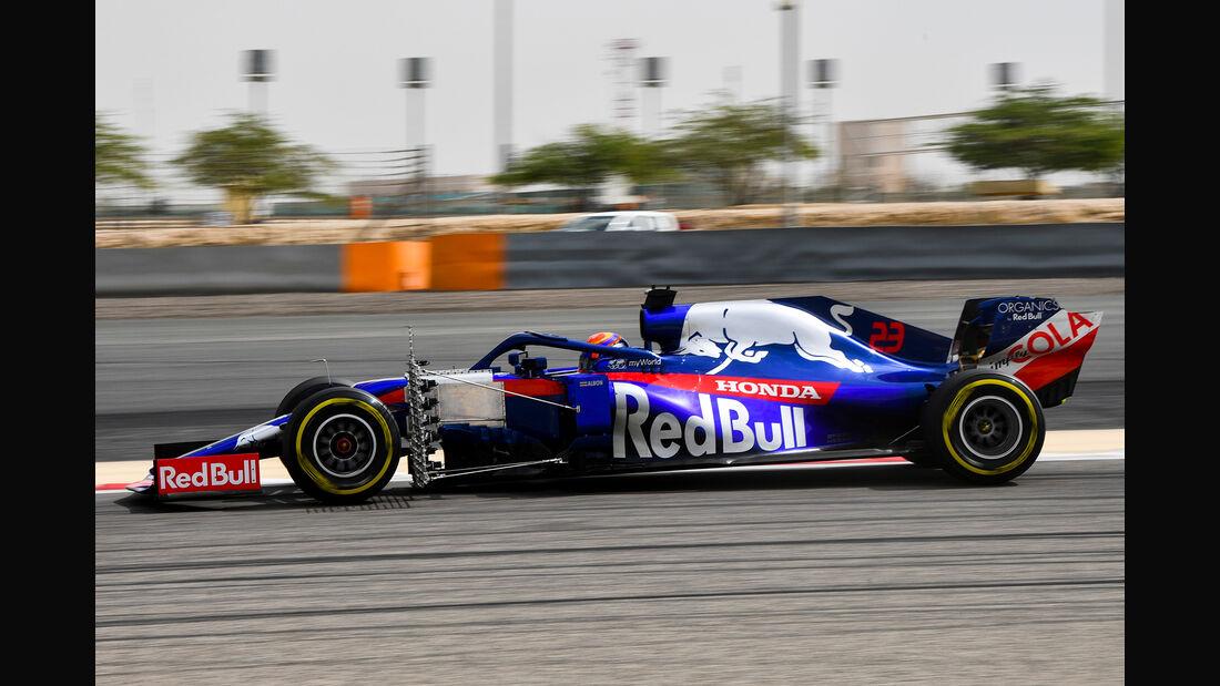 Alexander Albon - Toro Rosso - F1-Test Bahrain - 3. April 2019
