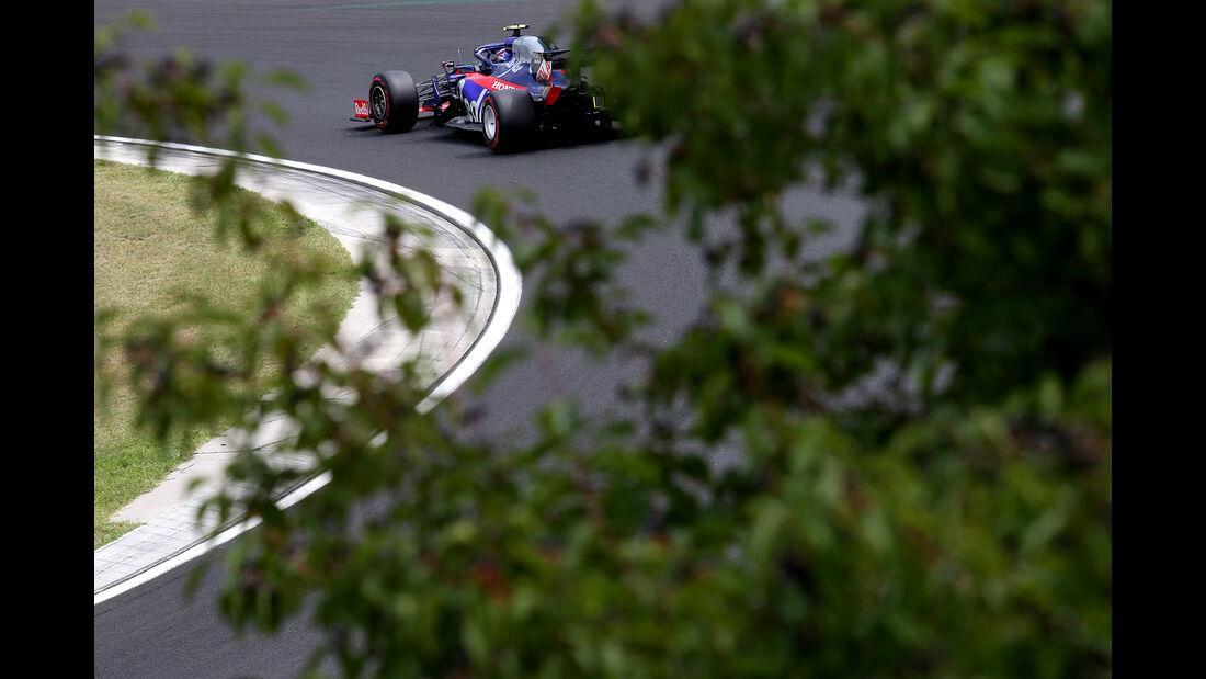 Alexander Albon - Toro Rosso - GP Ungarn - Budapest - Formel 1 - Freitag - 2.8.2019