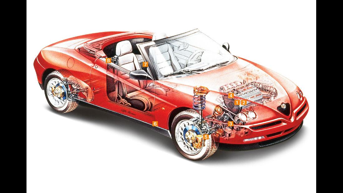 Alfa Romeo Spider, Schwachpunkte, Igelbild