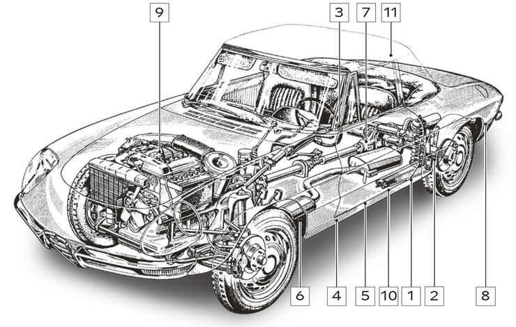 Alfa Romeo Spider, Schwachstellen, Igelbild