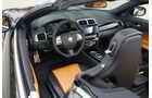 Arden-Jaguar Aj 20 RS, Cockpit