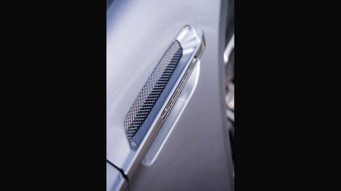 Aston Martin Rapide S, Seitenelement