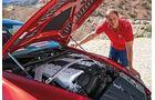 Aston Martin V12 Vantage S, Motor, Michael von Maydell