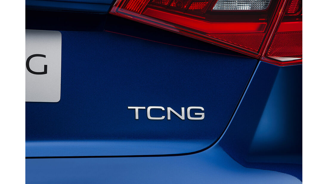 Audi A3 Sportback TCNG, Geck, Modellbezeichnung