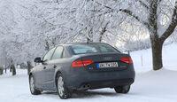 Audi A4 2.0 TDI, Winter, Bäume, Rückansicht