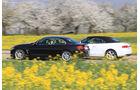 Audi A5 Cabrio, BMW Vierer Cabrio, Seitenansicht