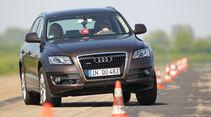 Audi Q5 3.0 TDI Quattro, Frontansicht, Slalom