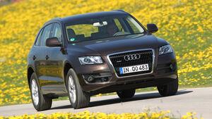 Audi Q5 3.0 TDI Quattro, Frontansicht, Wiese, Überlandfahrt
