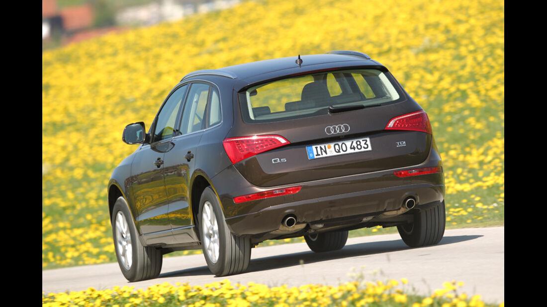 Audi Q5 3.0 TDI Quattro, Rückansicht, Wiese, Überlandfahrt