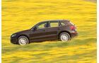 Audi Q5 3.0 TDI Quattro, Seitenansicht, Wiese, Überlandfahrt