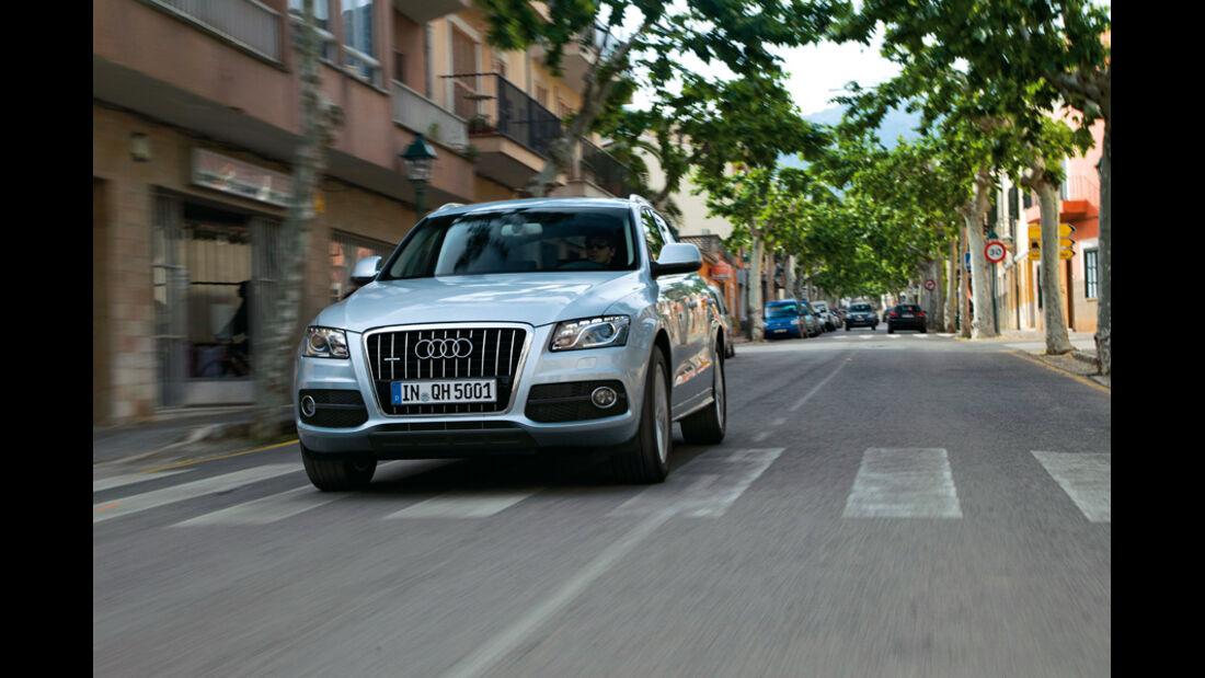 Audi Q5 Hybrid, Frontansicht, Kühlergrill