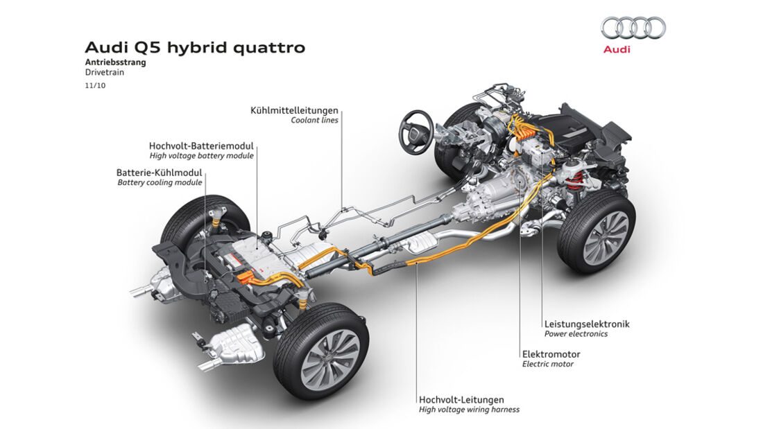 Audi Q5 Hybrid, Igelbild, Grafik