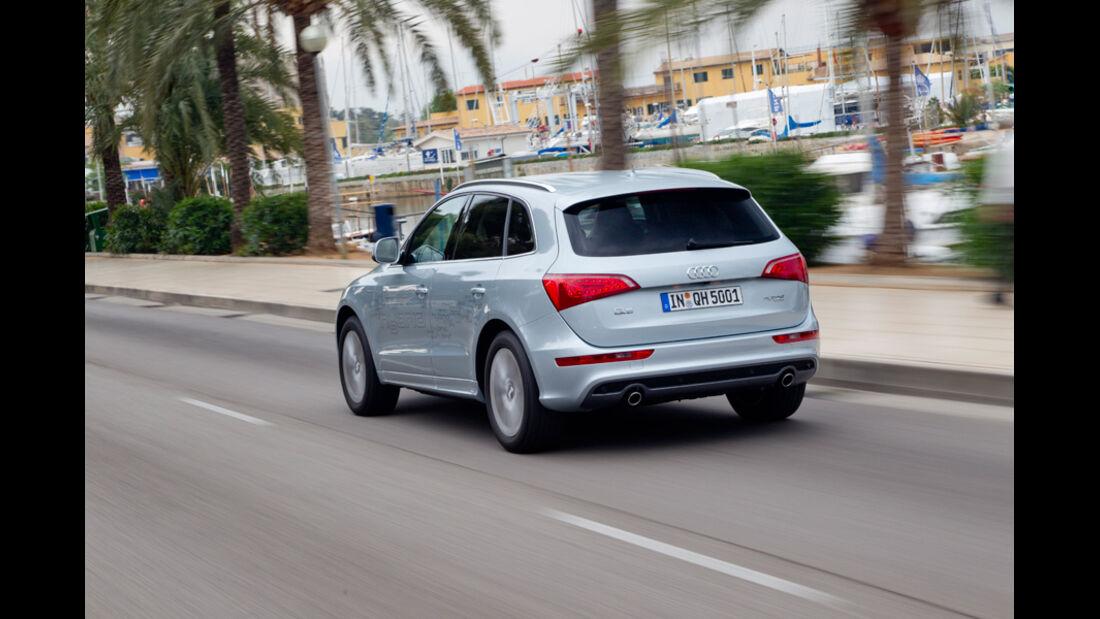 Audi Q5 Hybrid, Rückansicht, Heck