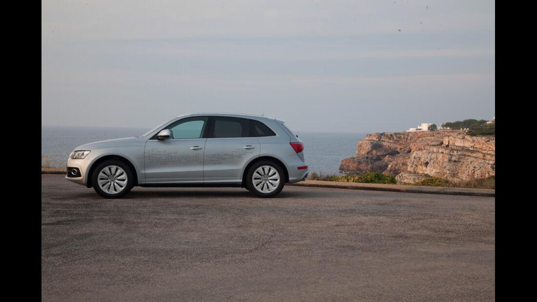 Audi Q5 Hybrid, Seitenansicht, Strand