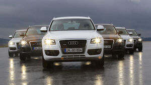 Audi Q5 Kaufberatung