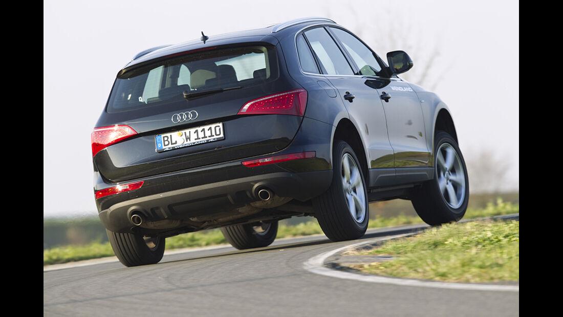 Audi Q5 Wendland