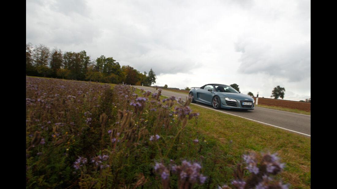 Audi R8 GT Spyder, Seitenansicht, Wiese