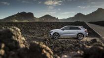 Audi RS Q8, Exterieur