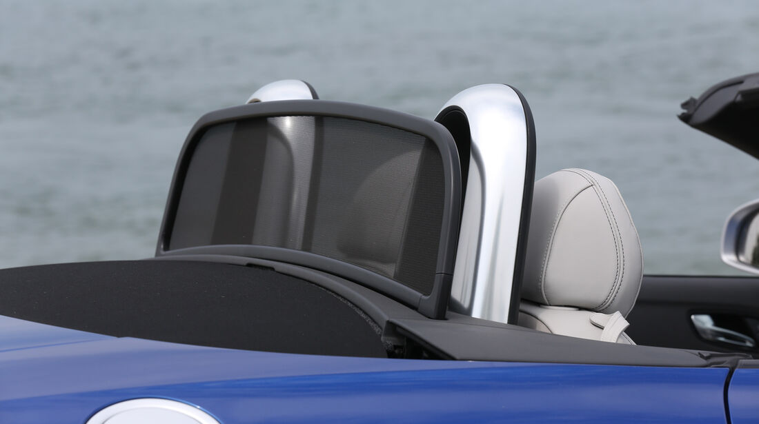 Audi TT RS, Kopfstütze