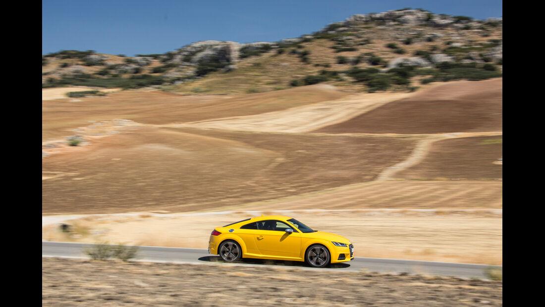 Audi TTS S tronic, Seitenansicht