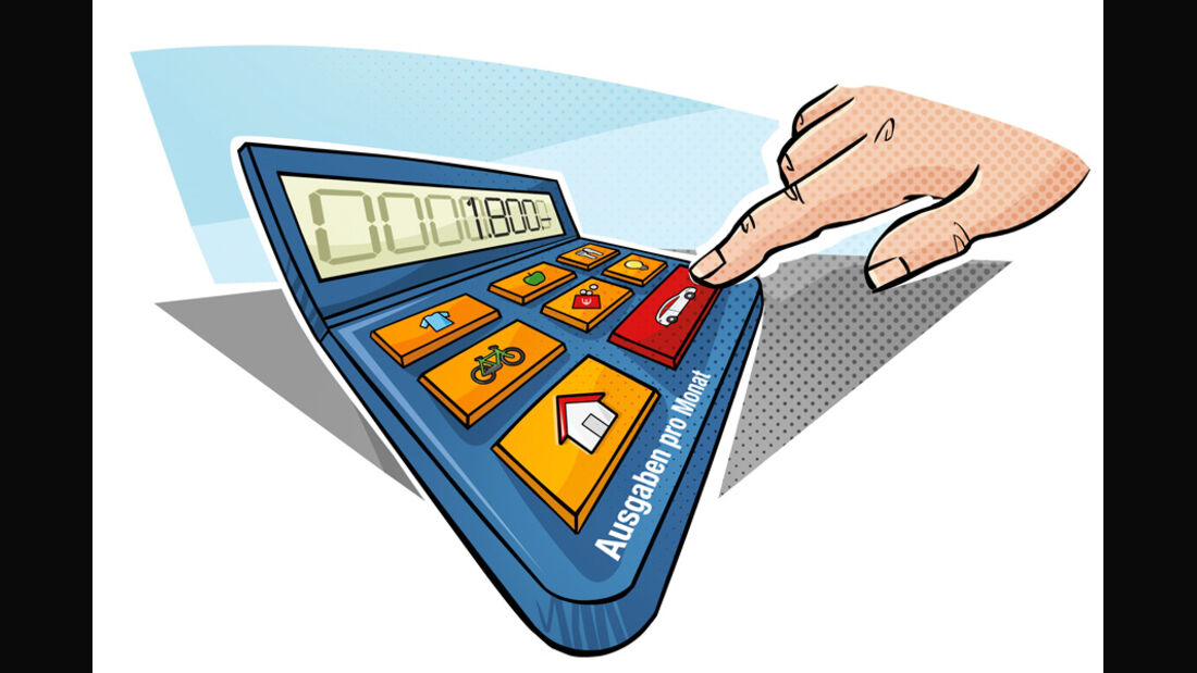 Ausgabenrechner, Grafik