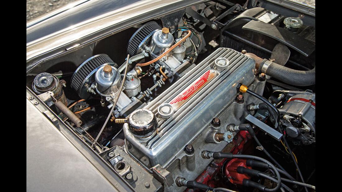 Austin Healey 100, Motor