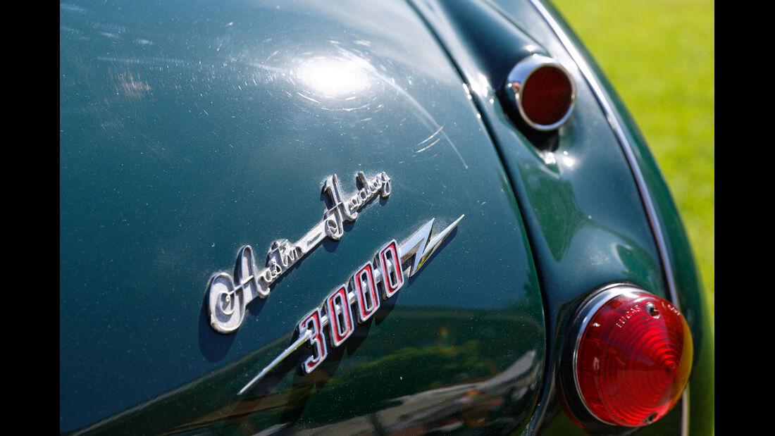 Austin-Healey 3000, Typenbezeichnung