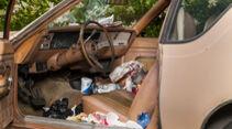 Auto vor Corona schützen, 2020