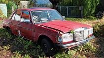 Autofriedhof Rust, Mercedes 240 D
