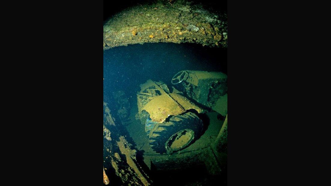 Autowrack unter Wasser, Fische