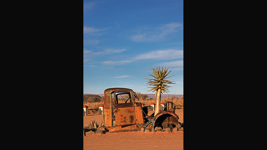 Autowracks in Namibia, Baum