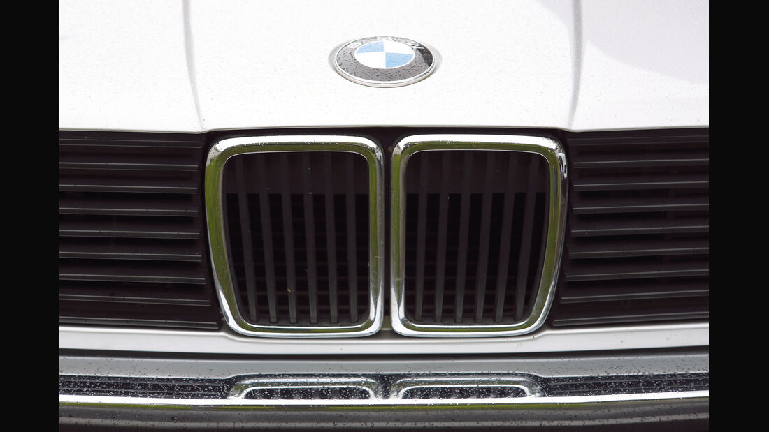 BMW 325e, Niere, Emblem
