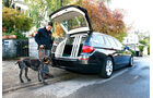 BMW 528i Touring, Hundetransport