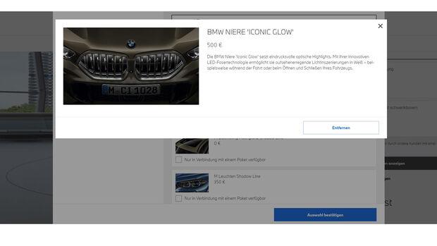 BMW Leucht Niere Iconic Glow X6